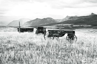 Wagons in Prairie Field